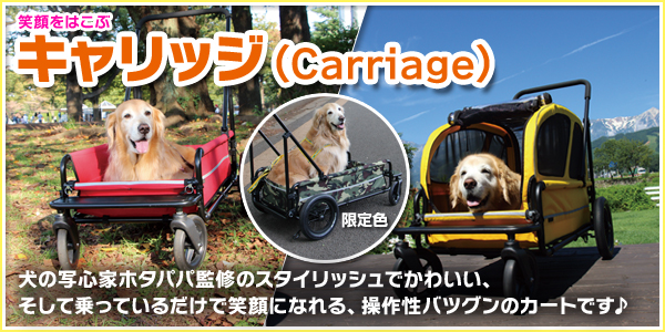 �G�A�o�M�[ �L�����b�W�iAirBuggy Carriage�j�i��^���E���^���p�J�[�g�j